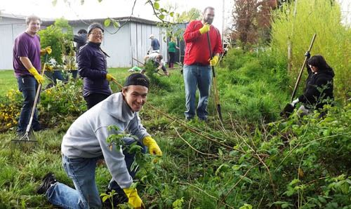 Five volunteers working in garden at Earth Day Clean Up